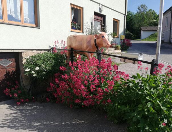 Haus.Kuh